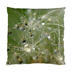Dandelion Cushion Case (two Sided)  by Siebenhuehner