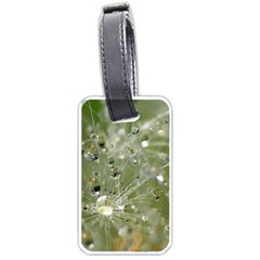Dandelion Luggage Tag (two Sides)