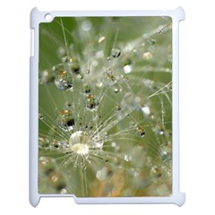 Dandelion Apple Ipad 2 Case (white) by Siebenhuehner