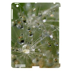 Dandelion Apple Ipad 3/4 Hardshell Case (compatible With Smart Cover) by Siebenhuehner