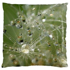 Dandelion Large Cushion Case (two Sided)  by Siebenhuehner