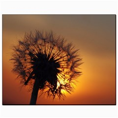 Dandelion Canvas 8  X 10  (unframed) by Siebenhuehner
