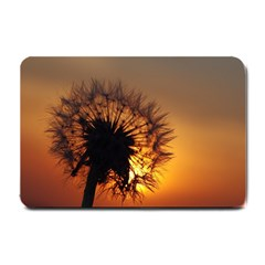 Dandelion Small Door Mat by Siebenhuehner