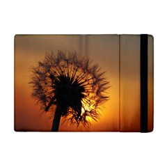 Dandelion Apple Ipad Mini Flip Case by Siebenhuehner