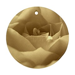 Rose  Round Ornament by Siebenhuehner