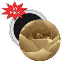 Rose  2 25  Button Magnet (10 Pack) by Siebenhuehner