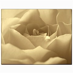 Rose  Canvas 11  x 14  (Unframed) by Siebenhuehner
