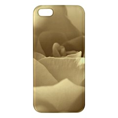 Rose  Iphone 5 Premium Hardshell Case by Siebenhuehner