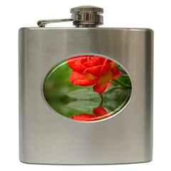 Rose Hip Flask by Siebenhuehner