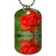 Rose Dog Tag (two Sided)  by Siebenhuehner