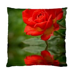 Rose Cushion Case (single Sided)  by Siebenhuehner