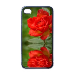 Rose Apple Iphone 4 Case (black) by Siebenhuehner