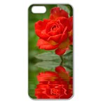 Rose Apple Seamless iPhone 5 Case (Clear) Front