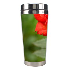 Rose Stainless Steel Travel Tumbler by Siebenhuehner