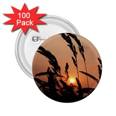 Sunset 2 25  Button (100 Pack) by Siebenhuehner