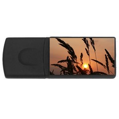 Sunset 4gb Usb Flash Drive (rectangle) by Siebenhuehner