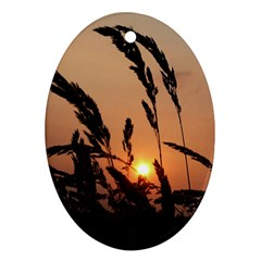 Sunset Oval Ornament (two Sides) by Siebenhuehner