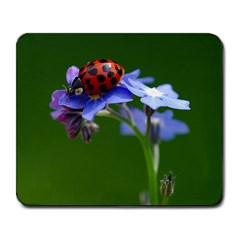 Good Luck Large Mouse Pad (rectangle) by Siebenhuehner