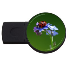 Good Luck 2gb Usb Flash Drive (round) by Siebenhuehner