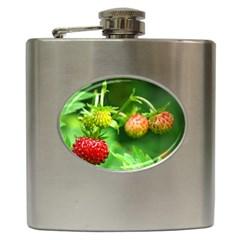 Strawberry  Hip Flask by Siebenhuehner