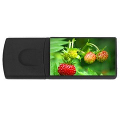 Strawberry  4gb Usb Flash Drive (rectangle)