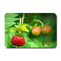 Strawberry  Small Door Mat