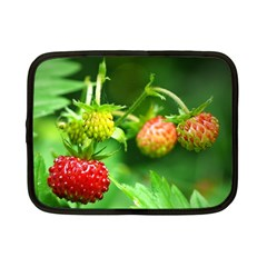 Strawberry  Netbook Case (small)