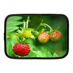 Strawberry  Netbook Case (medium)