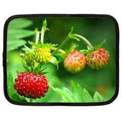 Strawberry  Netbook Case (xl) by Siebenhuehner