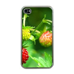 Strawberry  Apple Iphone 4 Case (clear) by Siebenhuehner