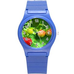 Strawberry  Plastic Sport Watch (small) by Siebenhuehner
