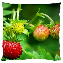 Strawberry  Large Cushion Case (two Sided)