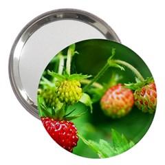 Strawberry  3  Handbag Mirror