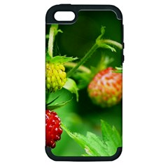 Strawberry  Apple Iphone 5 Hardshell Case (pc+silicone)