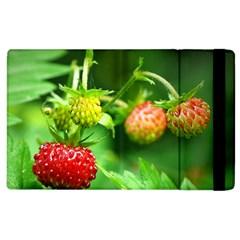 Strawberry  Apple Ipad 3/4 Flip Case by Siebenhuehner