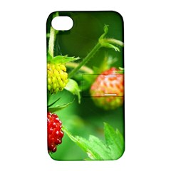 Strawberry  Apple Iphone 4/4s Hardshell Case With Stand by Siebenhuehner
