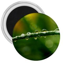 Waterdrops 3  Button Magnet by Siebenhuehner