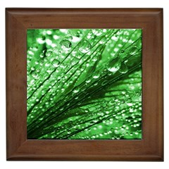 Waterdrops Framed Ceramic Tile by Siebenhuehner