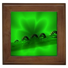 Drops Framed Ceramic Tile by Siebenhuehner