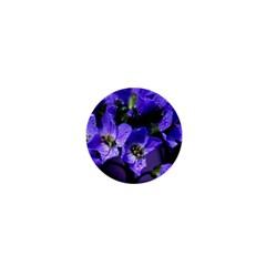 Cuckoo Flower 1  Mini Button Magnet by Siebenhuehner
