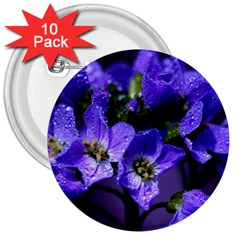Cuckoo Flower 3  Button (10 Pack)