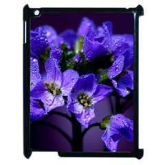Cuckoo Flower Apple Ipad 2 Case (black) by Siebenhuehner