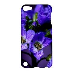 Cuckoo Flower Apple Ipod Touch 5 Hardshell Case