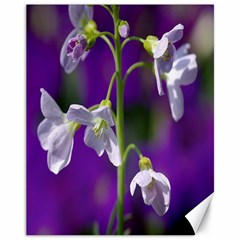 Cuckoo Flower Canvas 11  X 14  (unframed) by Siebenhuehner