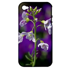 Cuckoo Flower Apple Iphone 4/4s Hardshell Case (pc+silicone) by Siebenhuehner