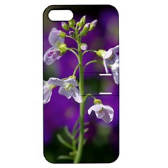 Cuckoo Flower Apple Iphone 5 Hardshell Case With Stand by Siebenhuehner