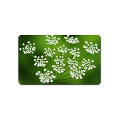 Queen Anne s Lace Magnet (name Card) by Siebenhuehner