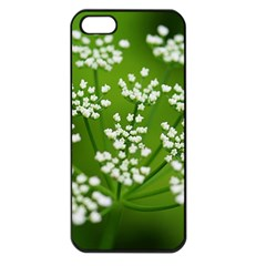 Queen Anne s Lace Apple Iphone 5 Seamless Case (black) by Siebenhuehner