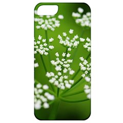 Queen Anne s Lace Apple Iphone 5 Classic Hardshell Case by Siebenhuehner