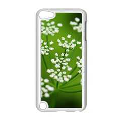 Queen Anne s Lace Apple Ipod Touch 5 Case (white) by Siebenhuehner